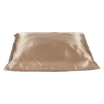 Beauty Pillow Champagne_